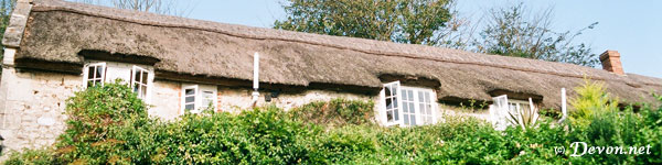 Branscombe Cottages Picture